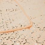 oranzine sidabrine marga daigstyta lovatiese