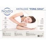 Antklodė FENG SHUI 70-0010-PAPYRUS